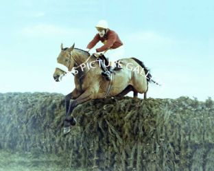 Red Rum with Tommy Stack (709-07a)